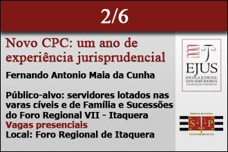 NOVO CPF - UM ANO DE EXPERIÊNCIA JURISPRUDENCIAL
